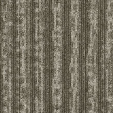 Genius By Shaw Philadelphia Dalton Hospitality Carpet